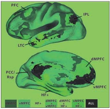 """Těžiště (""""náby"""", angl.hubs) a barevně vyznačené podsystémy implicitní sítě lidského mozku. Třemi těžišti jsou dorsomediální prefrontální kůra (dMPFC), ventromediální prefrontální kůra (vMPFC) a hipokampální formace (HF+). Kombinovaná mapa je velmi blízká mapě získané PET Zadní cingulární a retrosplenická kůra (PCC/Rsp), lobulus parietalis inferior (IPL) a vMPFC jsou korové oblasti, v nichž se sbíhají spoje všech ostatních oblastí sítě. dMPFC a HF + jsou funkčně korelované s ostatními oblastmi sítě, nikoli však vzájemně. Patří tedy patrně k odlišným podsystémům. Area 7m (označená hvězdičkou), která je součástí precuneu, součást intrinsické sítě není. LTC je zevní spánková kůra. ALL všechny Dle Buckner et al. (4)."""