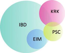 Schematické znázornění vztahu PSC, IBD, EIM a KRK. PSC – primární sklerozující cholangitida, IBD – idiopatický střevní zánět, KRK – kolorektální karcinom, EIM – extraintestinální manifestace IBD. Fig. 4. Diagram of the relationship between PSC, IBD, EIM and CRC. PSC – primary sclerosing cholangitis, IBD – inflammatory bowel disease, CRC – colorectal carcinoma, EIM – extraintestinal manifestation of IBD.