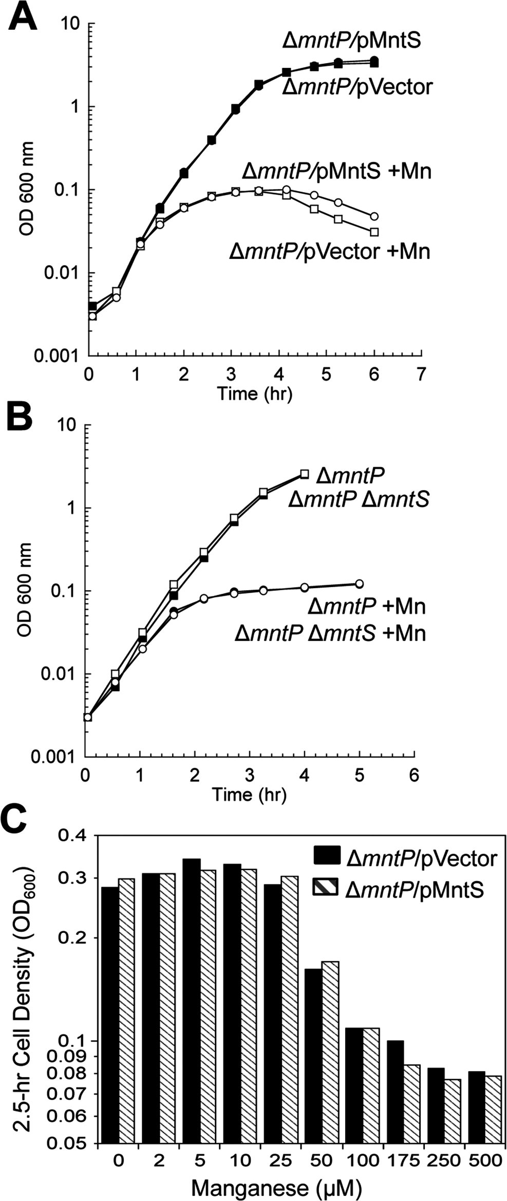 The <i>mntP</i>-null mutation is epistatic to overproduction of MntS with respect to manganese sensitivity.