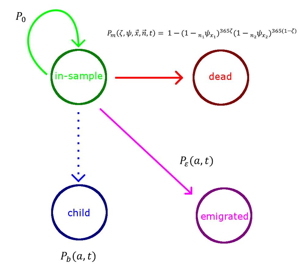 Simulated population model.