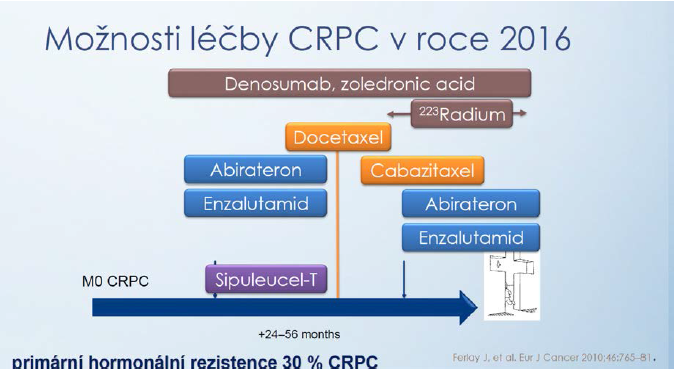 Přehled možností léčby CRPC (upraveno podle Ferlay [13]) Fig. 1 Overview of treatment options for CRPC (adapted according to Ferlay [13])