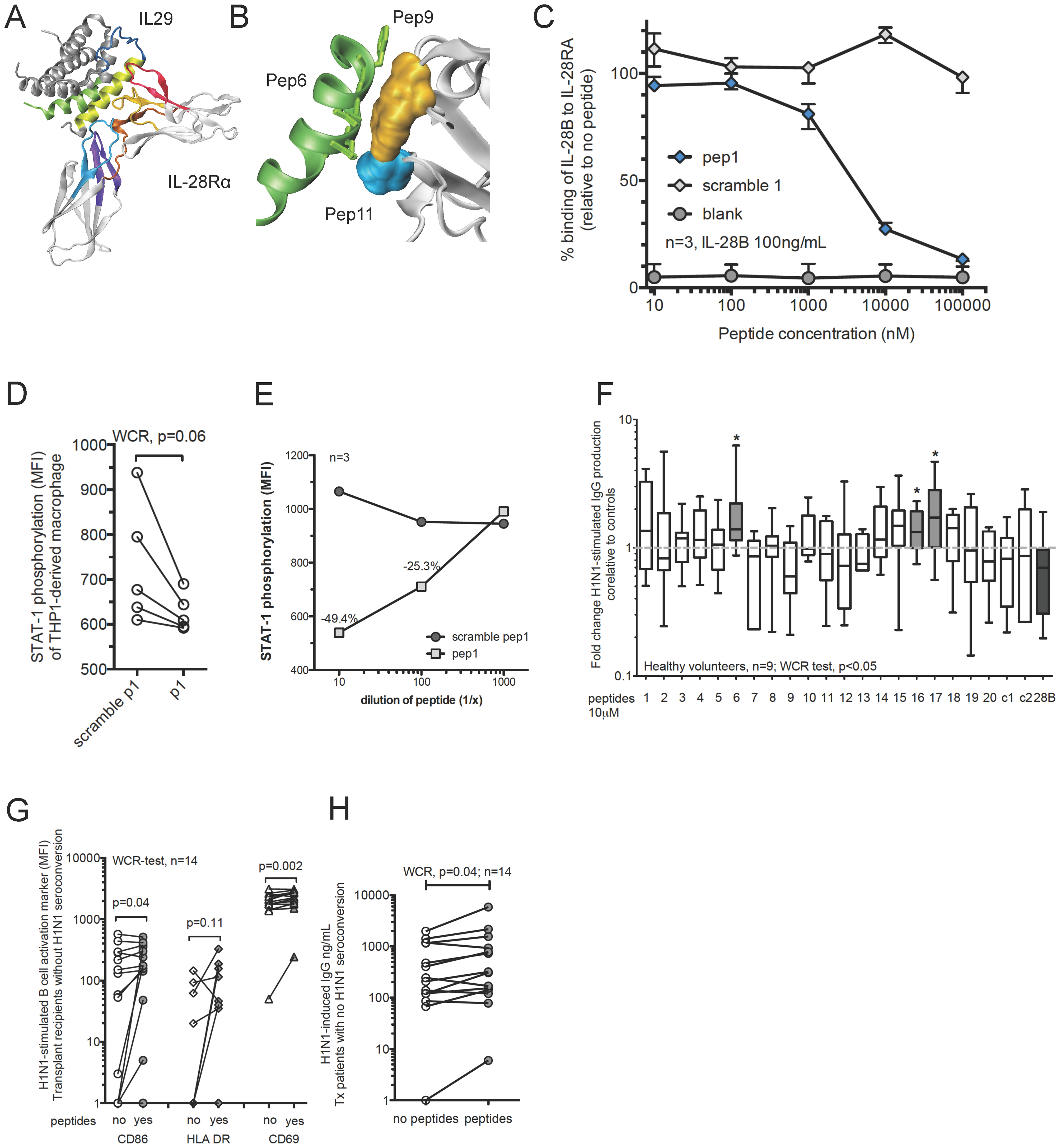Design of antagonistic peptides against IL-28 receptor alpha subunit (IL28RA) and their effects on H1N1-stimulated B-cell functions.