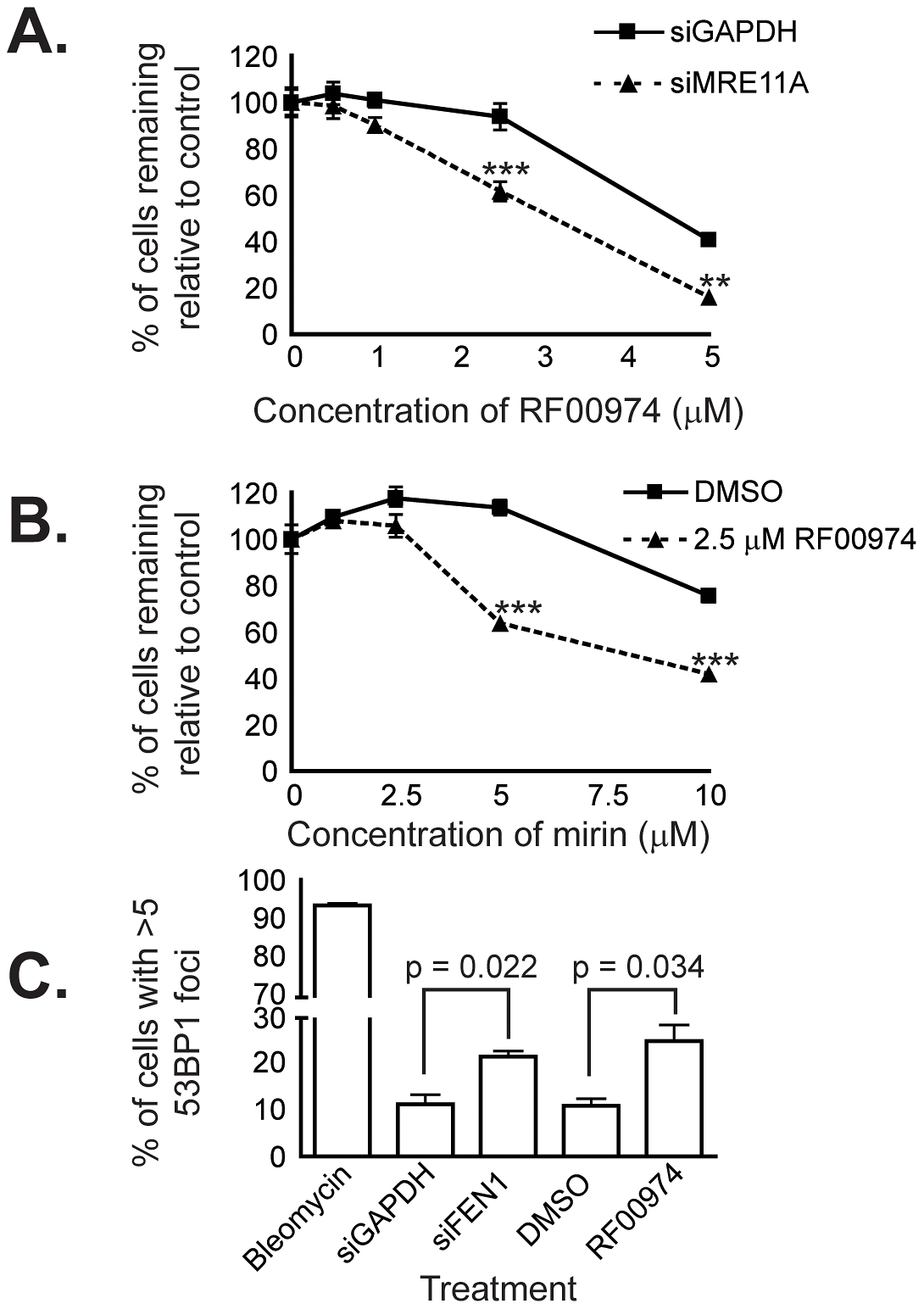 RF00974 recapitulates the interaction between <i>FEN1</i> and <i>MRE11A</i>, and leads to increased endogenous DNA damage.