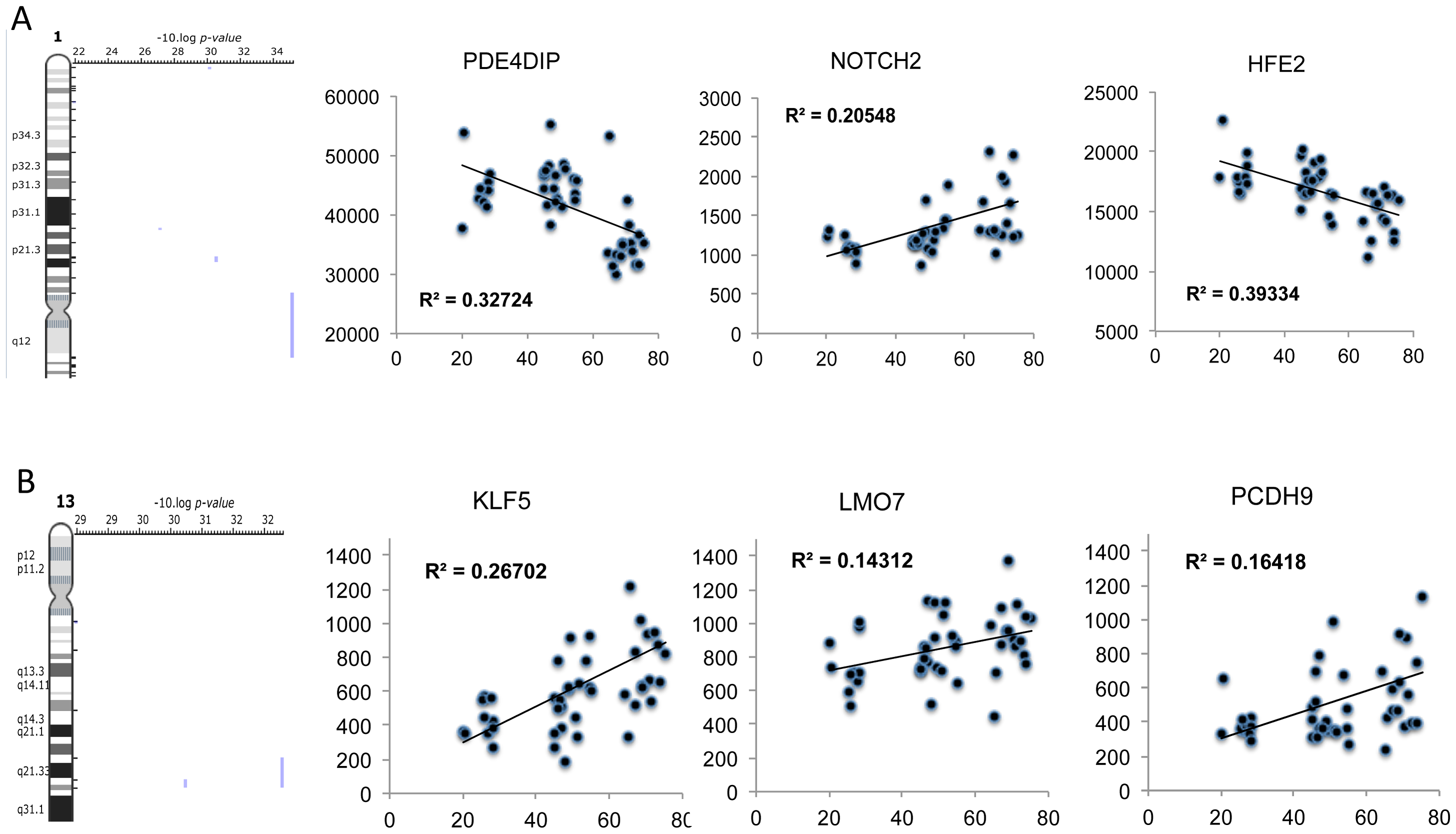 Positional enrichment analysis identified age-related genes that were over-represented on 4 chromosomes including Chromosome 1 and 13.