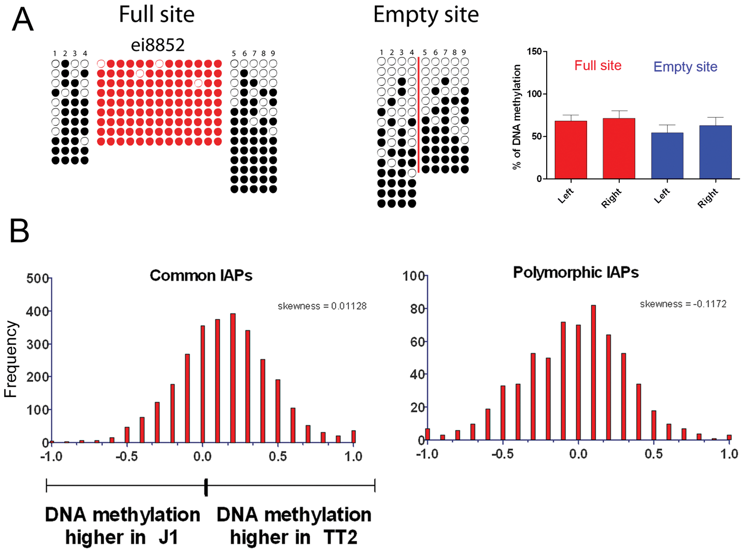 DNA methylation analysis of IAPs in both ES cell lines.