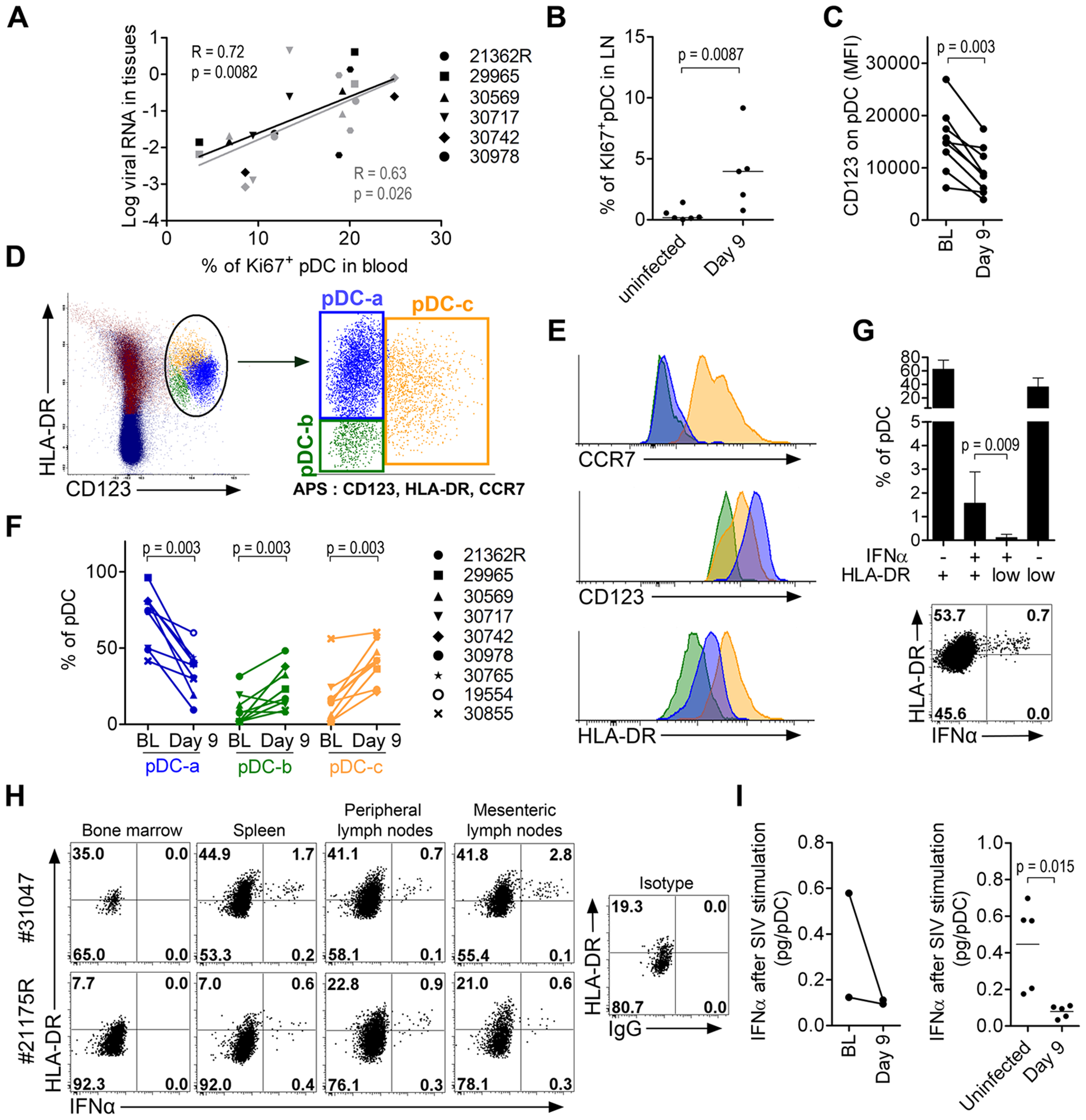 Plasmacytoid DC precursors disseminate into tissues during primary infection and are consistently IFNα negative.