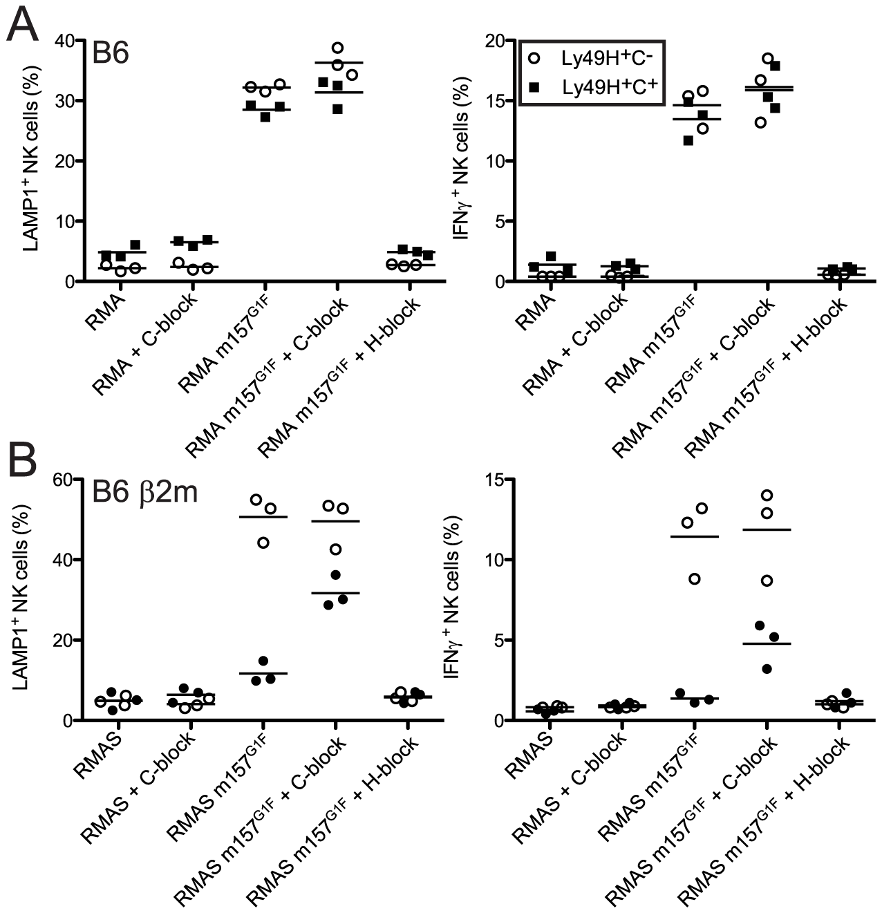 m157<sup>G1F</sup>–Ly49C binding regulates Ly49H-dependent NK cell functions <i>ex vivo</i>.