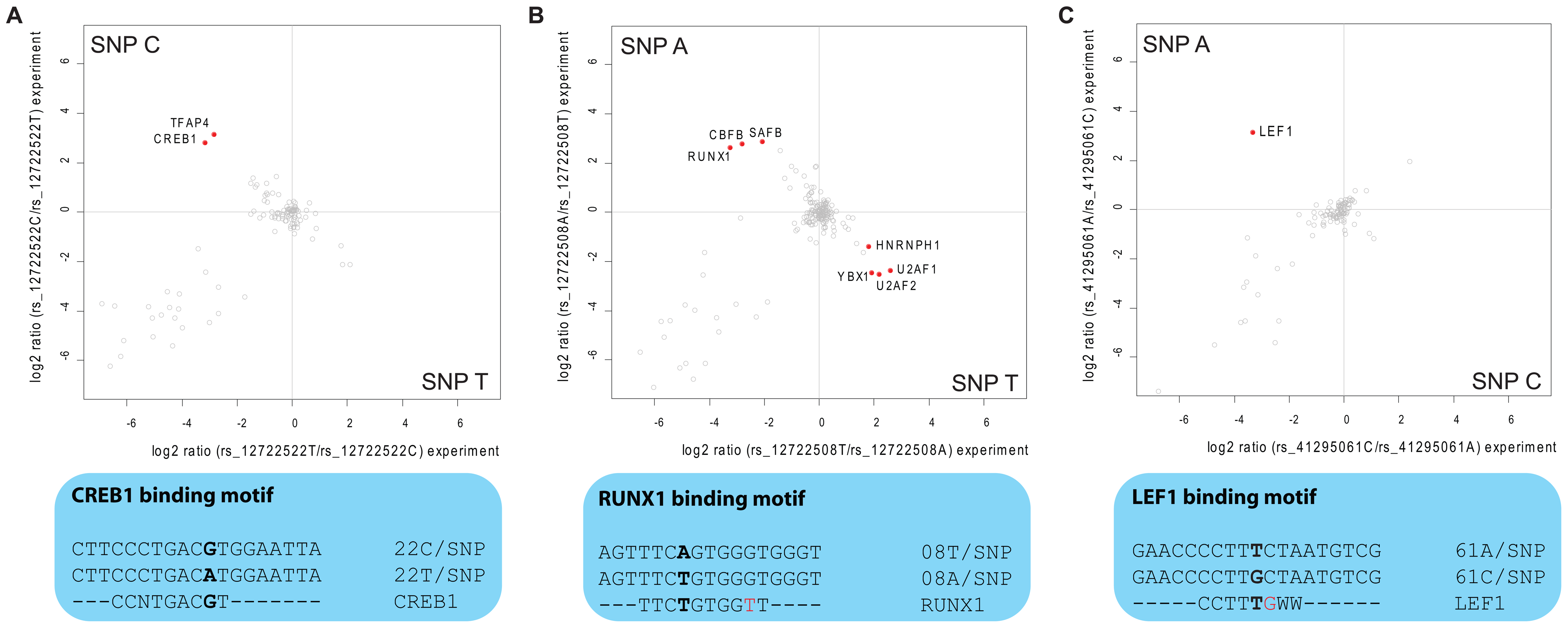 Interaction analysis for fine-mapped T1D SNPs.