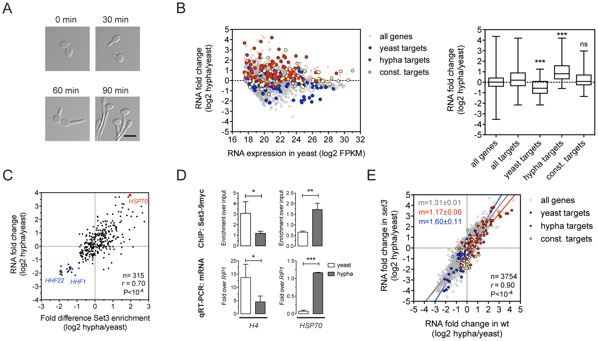 Set3C recruitment predicts induction and depletion predicts repression.