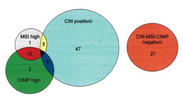 Poměrné zastoupení jednotlivých genetických a epigenetických subtypů KRCa. Chromozomální nestabilitu (CIN positivní) vykazuje 58 % KRCa, mikrosatelitní nestabilitu (MIN high) 18 % případů KRCa, metylaci CpG (CIMP high) ostrůvků 20 % KRCa a negativitu ve všech třech znacích 27% KRCa. Volně upraveno podle [5]. Fig. 2. Proportional representation of the genetic and epigenetic subtypes of colorectal carcinomas (CRC). Chromosomal instability (CIN positivity) is present in 58% of CRC, microsatellite instability (MIN high) in 18% of CRC, CpG island methylation (CIMP high) in 20% of CRC and 27% of CRC is negative in all three criterions. Modified from [5].