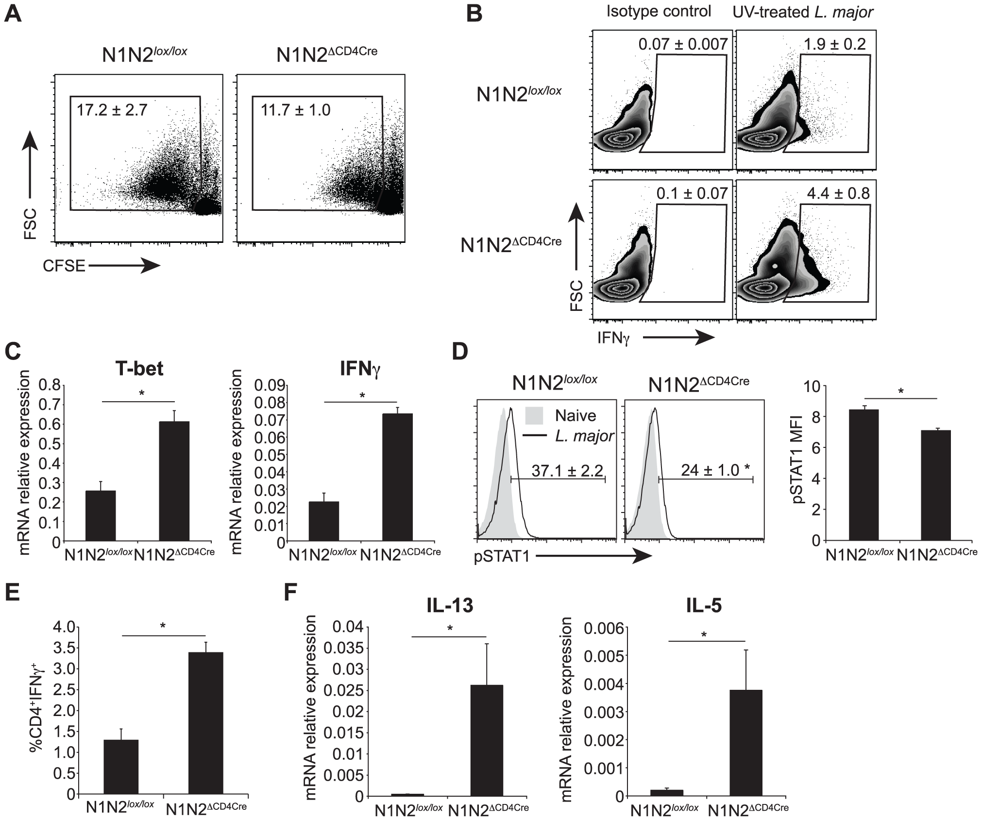 N1N2<sup>ΔCD4Cre</sup> mice transcribe T-bet and IFNγ in dLN CD4<sup>+</sup> T cells but do not secrete it.