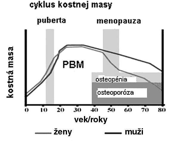 Kostná masa a vek u mužov a žien