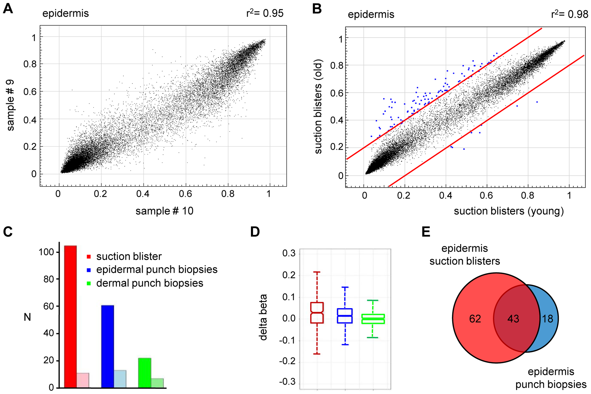 Age-related hypermethylation in human epidermis samples.