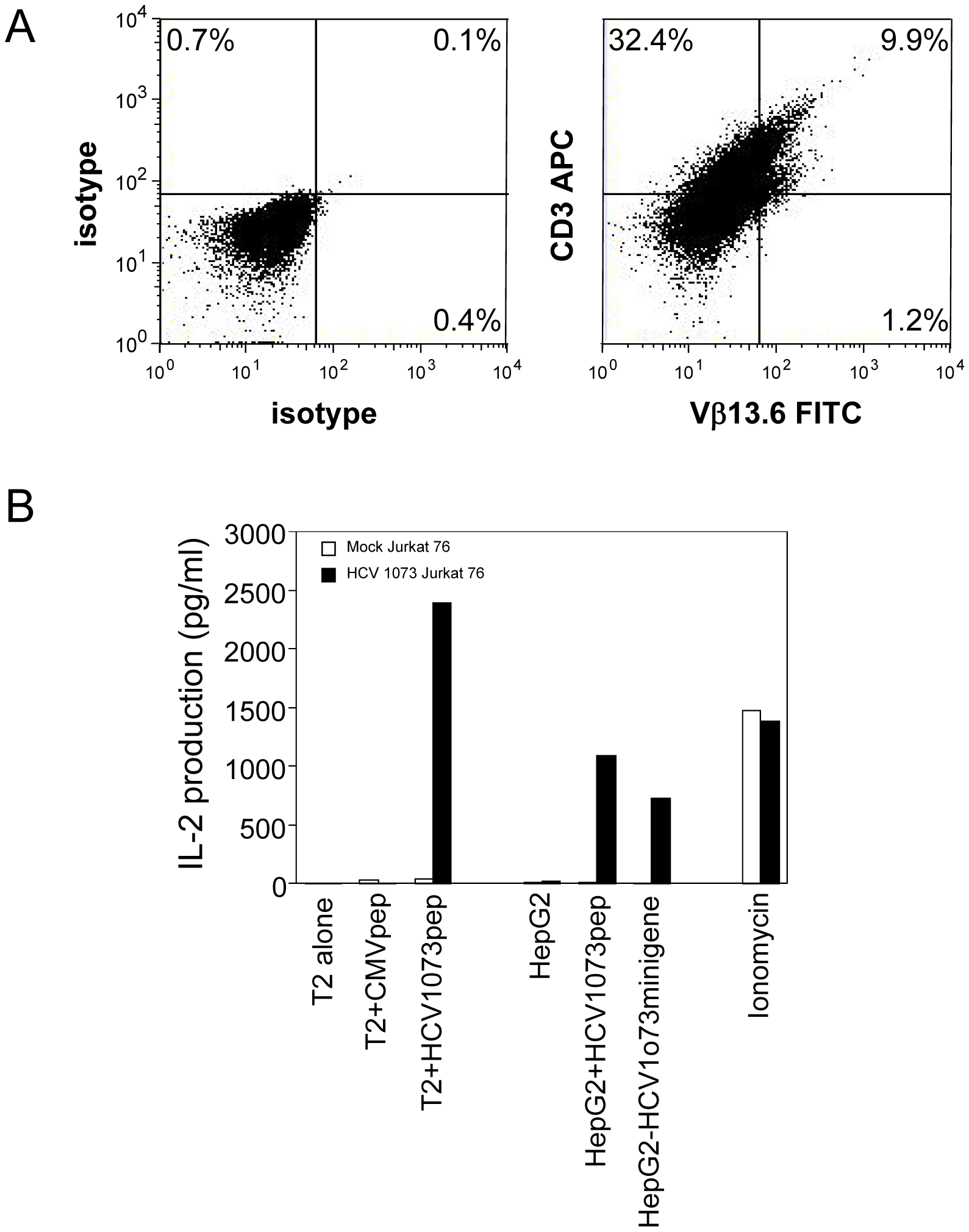 Expression and Function of the HCV TCR in Jurkat 76 cells.