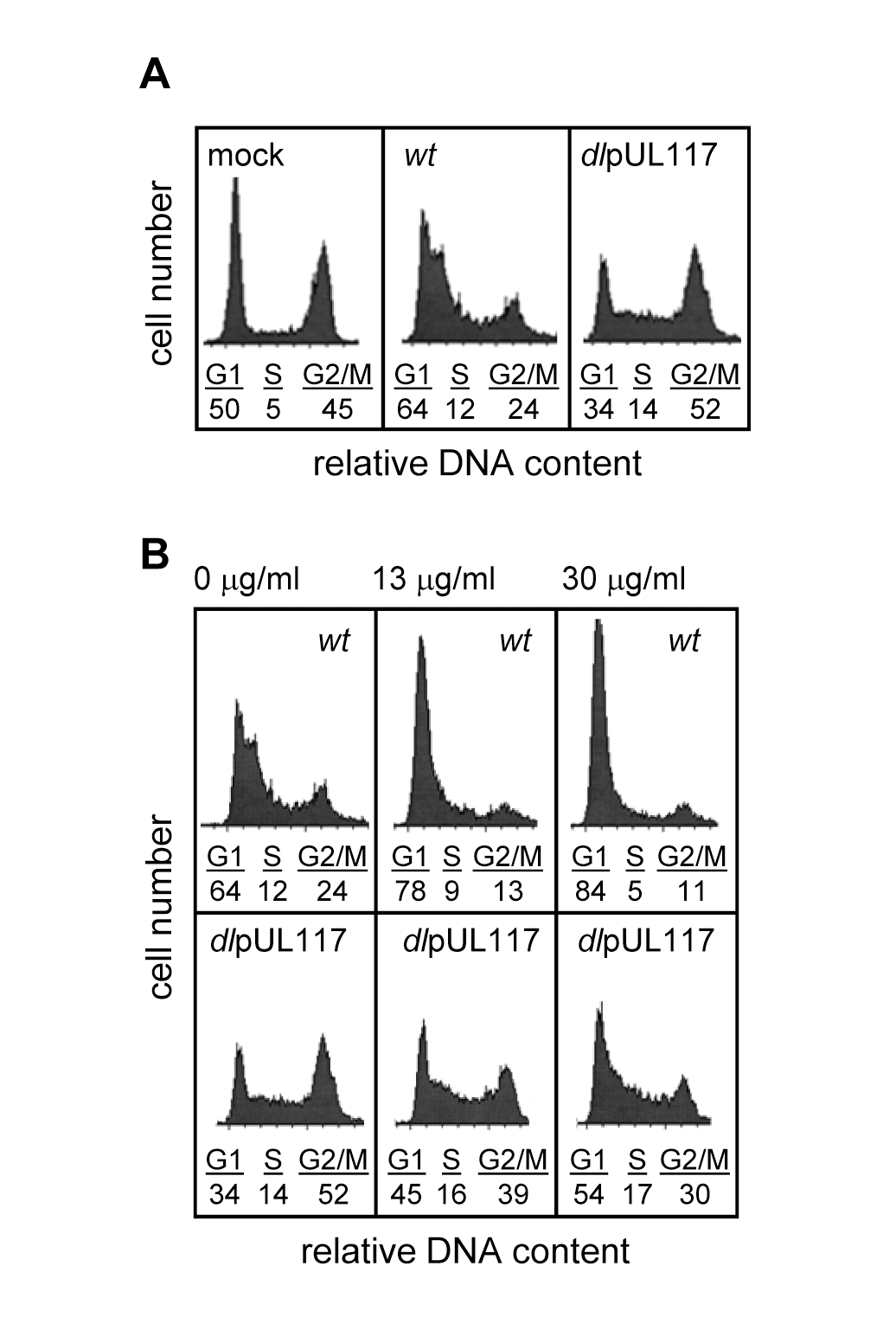 UL117-deficient virus failed to block host DNA synthesis during infection of actively growing human foreskin fibroblasts (HFFs).