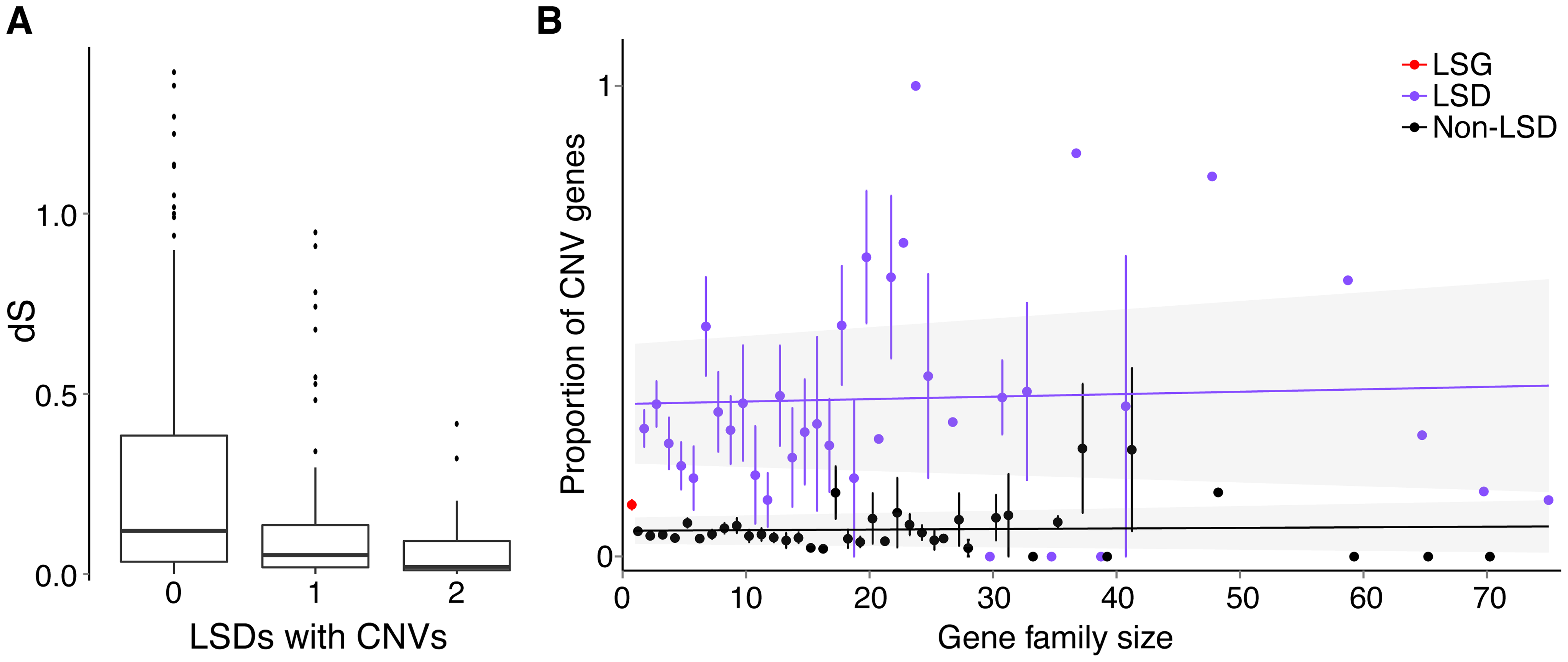 Relationship between gene duplications and CNVs.