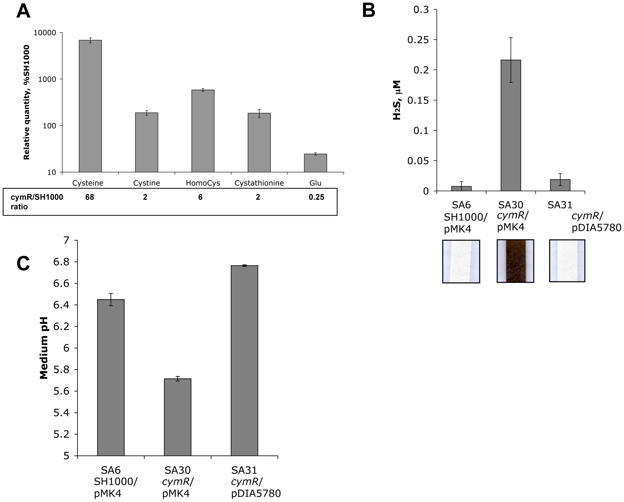 Metabolic changes in the Δ<i>cymR</i> mutant after growth in the presence of cystine.