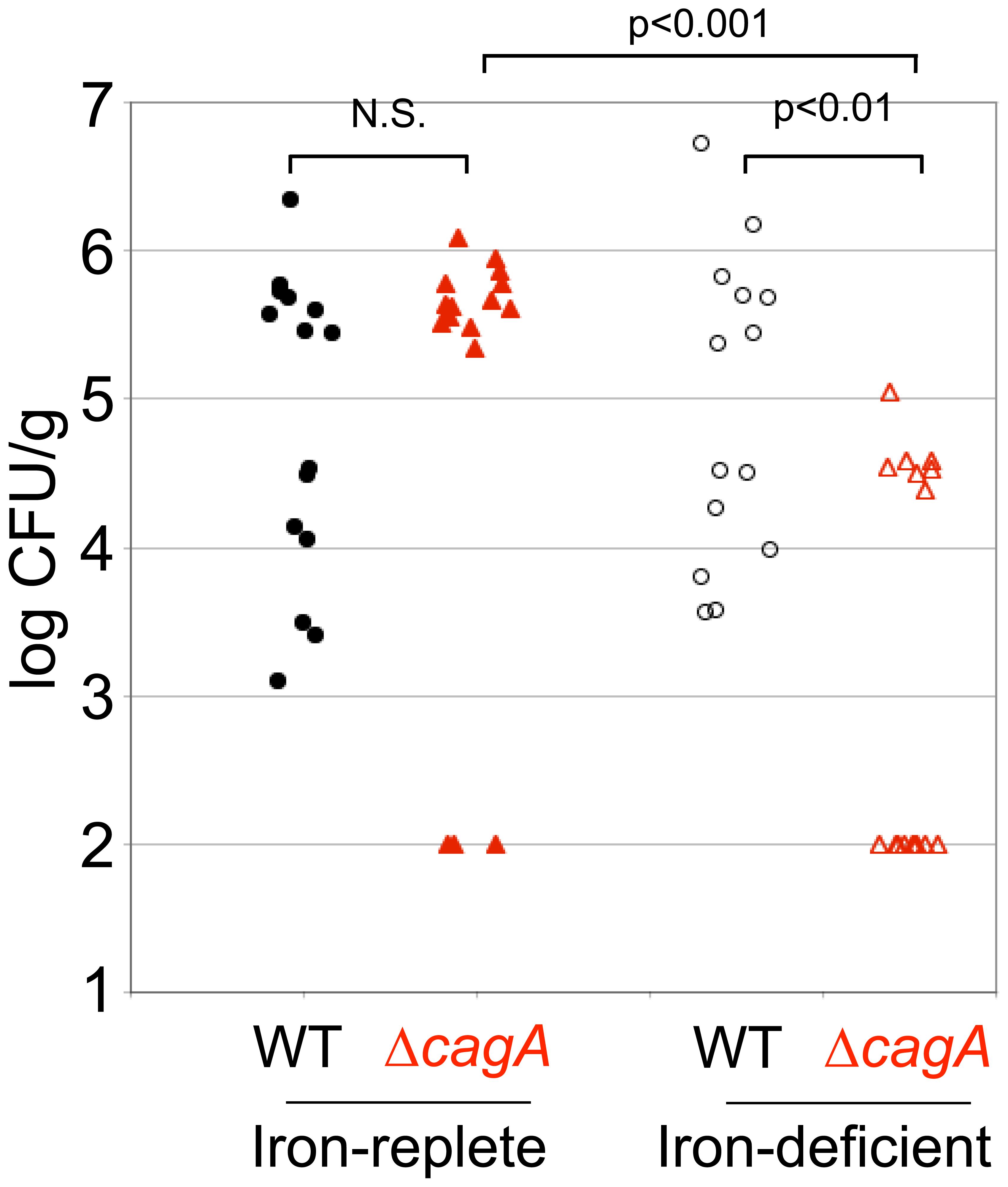 Host iron depletion decreases Δ<i>cagA</i> fitness <i>in vivo</i>.