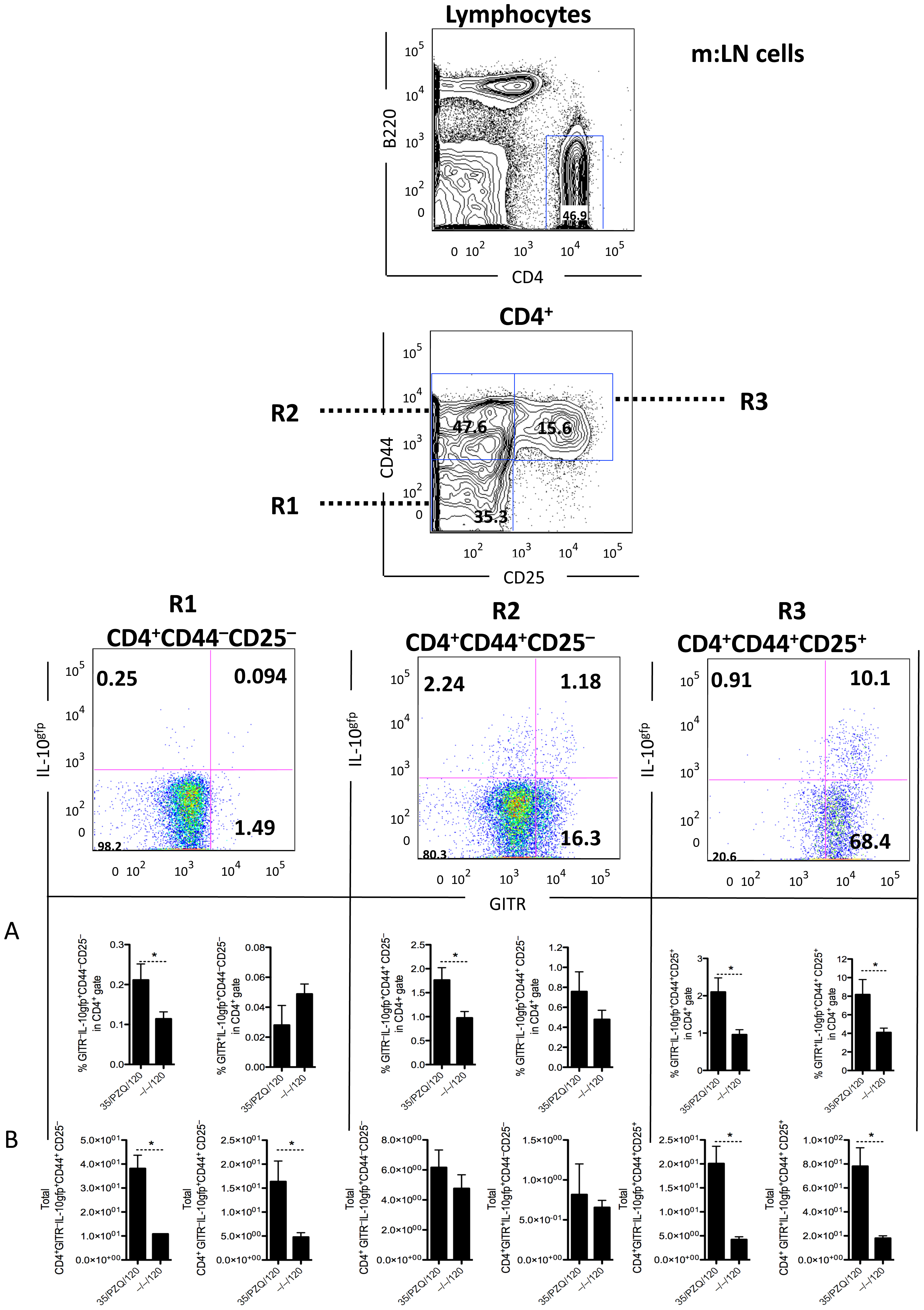 Elevated CD4<sup>+</sup>CD44<sup>+</sup>CD25<sup>+</sup>GITR<sup>+</sup>IL-10gfp<sup>+</sup> cells in PZQ-treated mice.