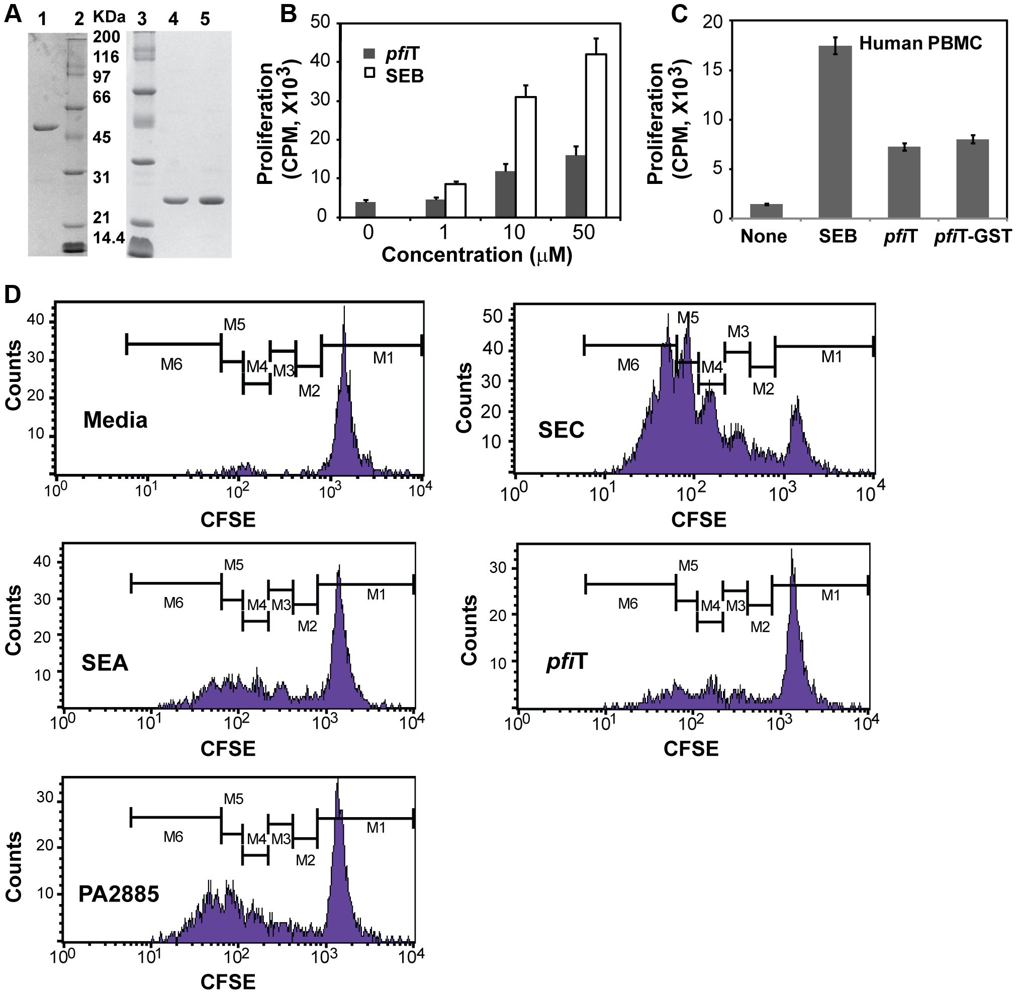 Soluble recombinant <i>pfi</i>T and PA2885 stimulate the activation of lymphocytes.
