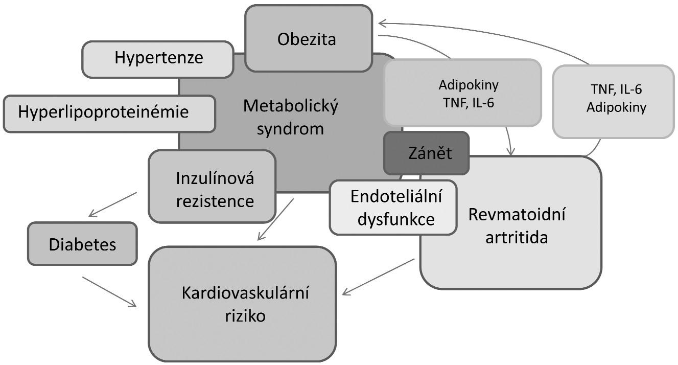 Vzájemný vztah a interakce mezi obezitou, kardiovaskulárními chorobami a revmatoidní artritidou (upraveno podle ref. 29).