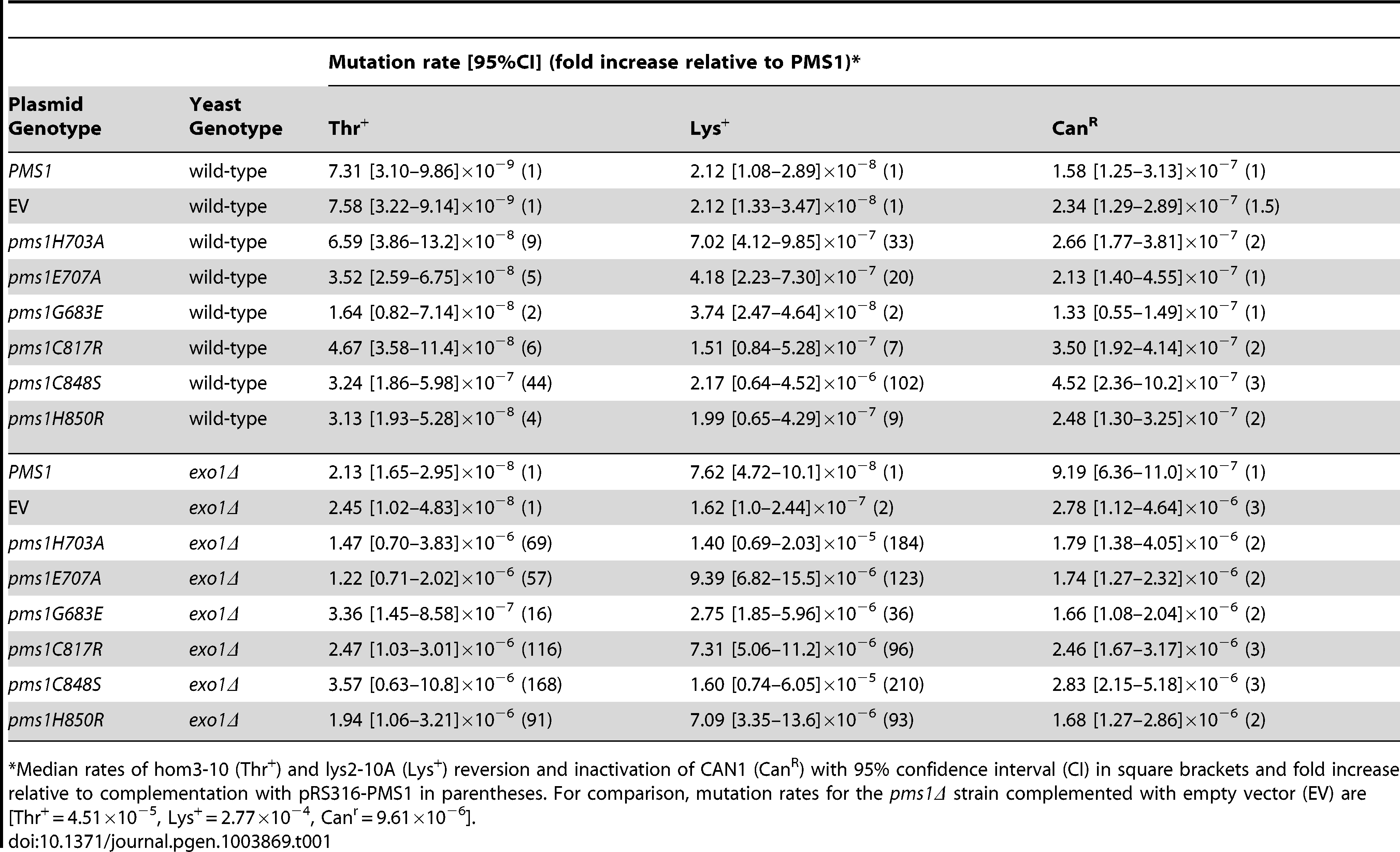 Mutation rates of <i>pms1</i> metal coordination mutants on a low-copy plasmid in wild-type and <i>exo1Δ</i> strains.