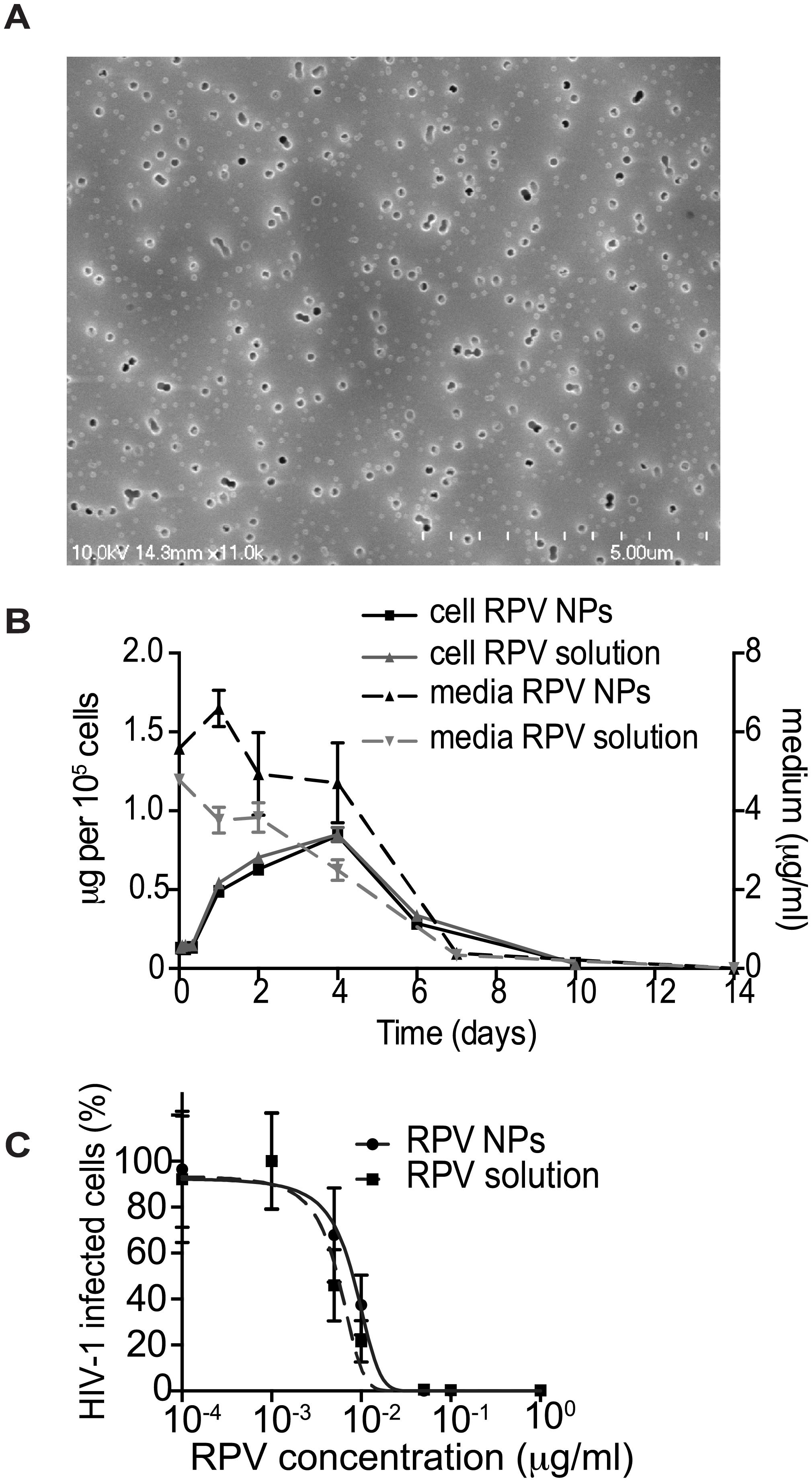 <i>In vitro</i> characterization of PLGA/RPV NPs in thermosensitive gel.