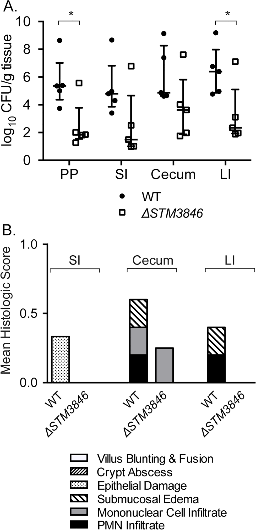 The Δ<i>STM3846</i> mutant colonizes the non-inflamed intestine poorly in the murine typhoid model.