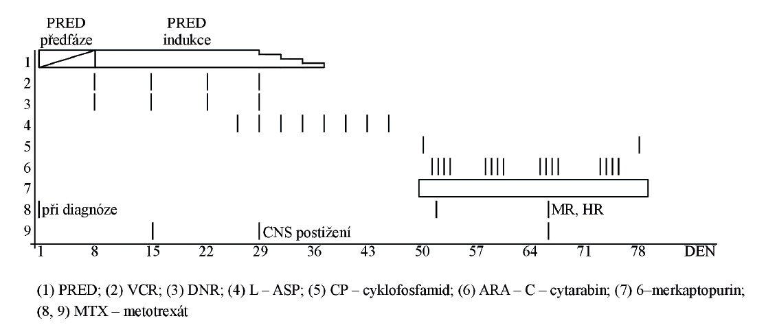 Zařazení PRED-předfáze do protokolární léčby ALL, upraveno podle protokolu ALL-BFM 86, Rhiem et al., 1987; MR: medium risk, HR: high risk).