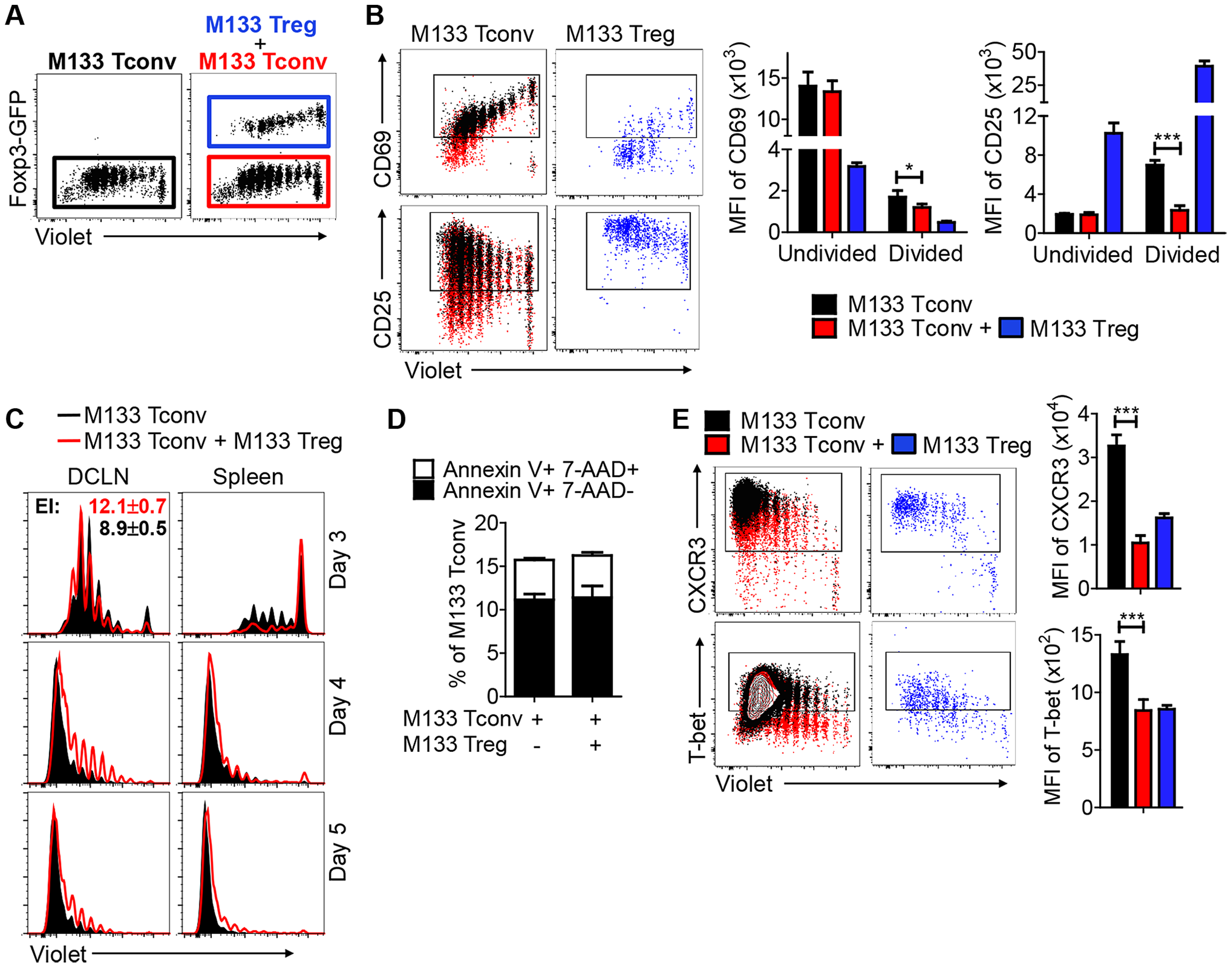 M133 Tregs inhibit M133 Tconv proliferation in, and egress from, the DCLN.