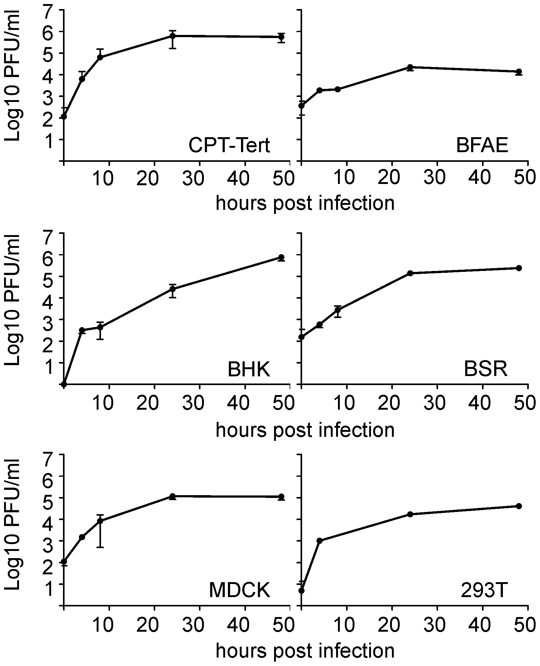 <i>In vitro g</i>rowth kinetics of SBV.