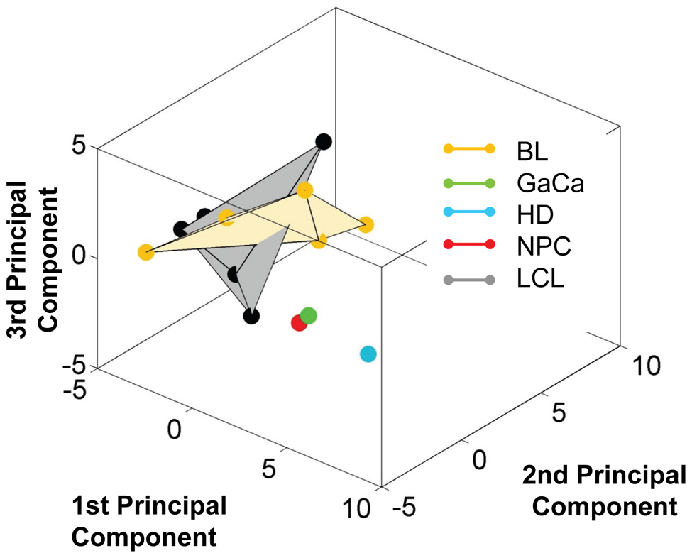 Unlike BL biopsies, the miRNA expression profile for BL derived cell lines is indistinguishable from LCL by principal component analysis.