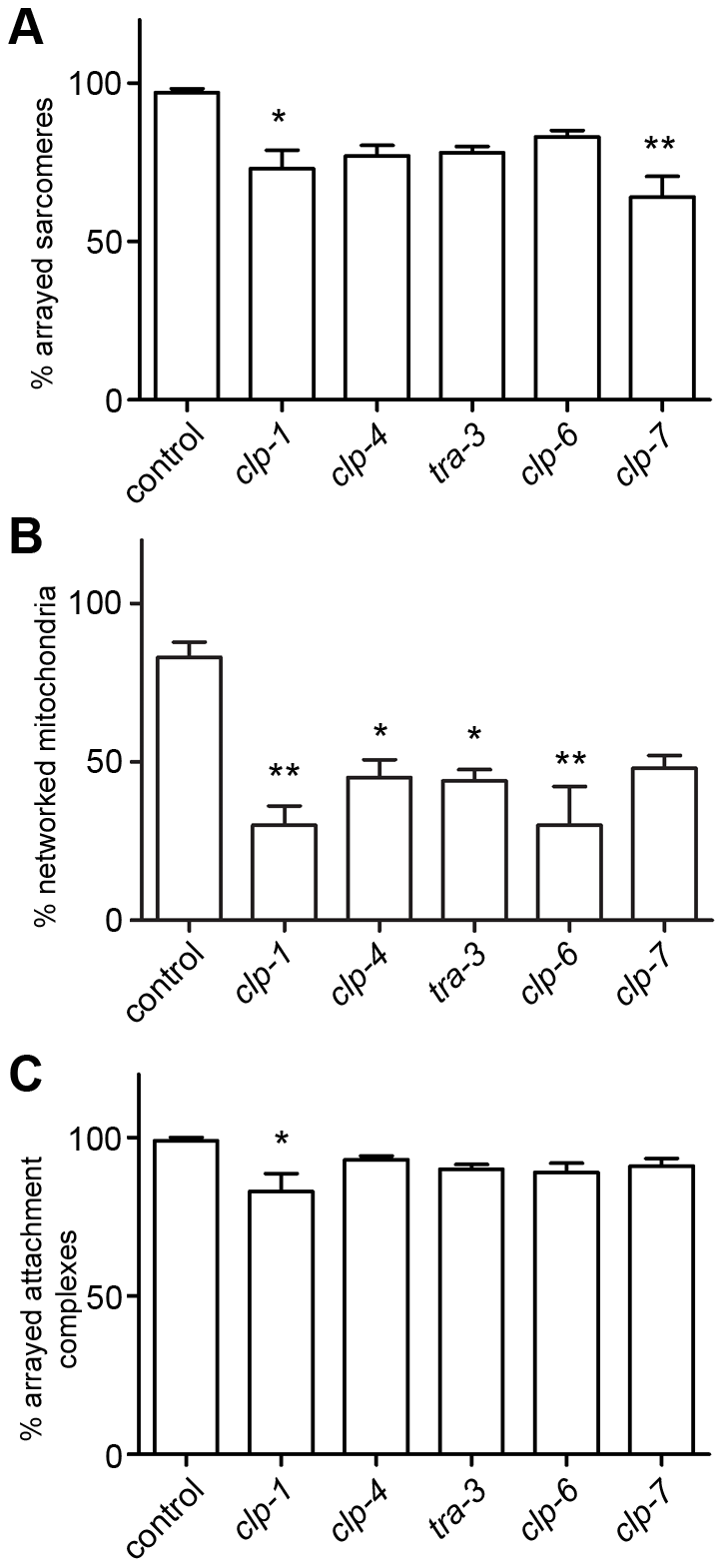 Calpains are important for development of <i>C. elegans</i> muscle.