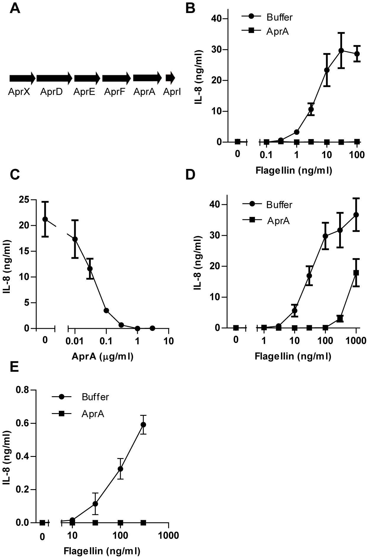 AprA prevents flagellin-induced IL-8 production by HEK/TLR5 cells.