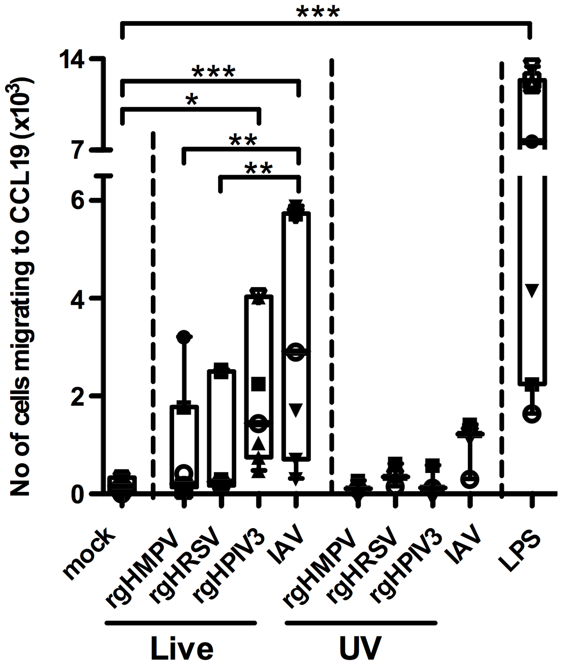 MDDC stimulated with IAV migrate more efficiently to a CCL19 concentration gradient than HMPV- or HRSV-stimulated MDDC.
