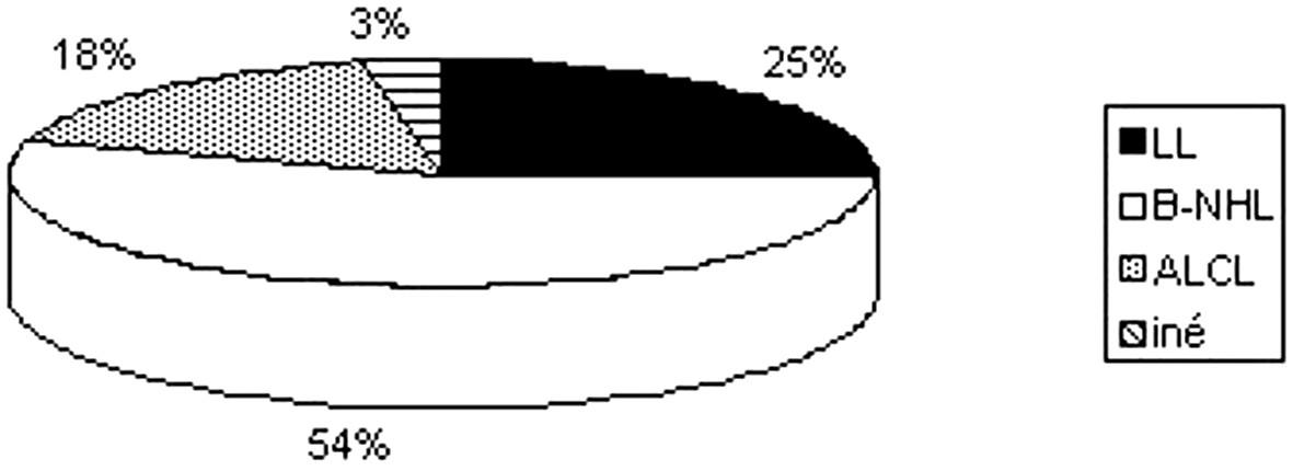 Zastúpenie jednotlivých podtypov lymfómov.