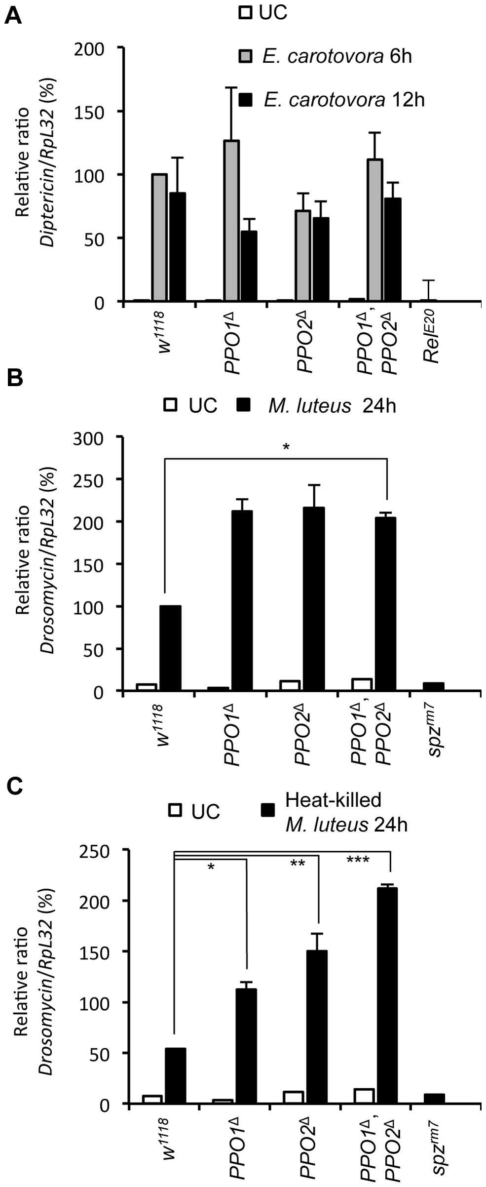 Melanization is not required for Toll and Imd pathway activities.