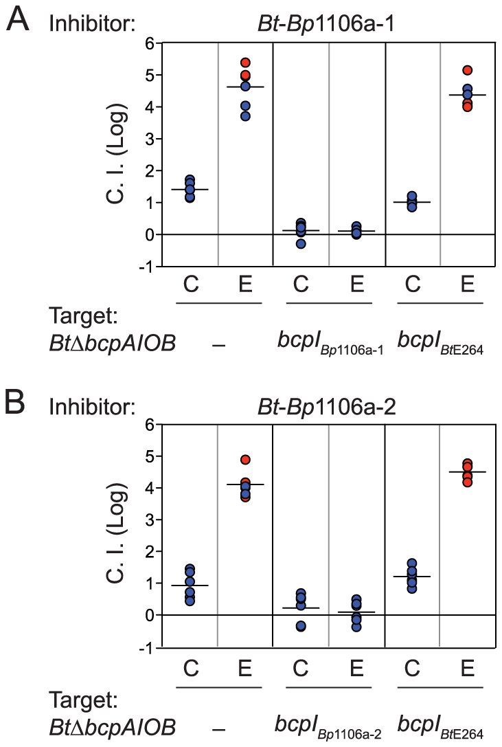 <i>Bt</i>-<i>Bp</i>1106a-1 and <i>Bt</i>-<i>Bp</i>1106a-2 mediated interbacterial competition.