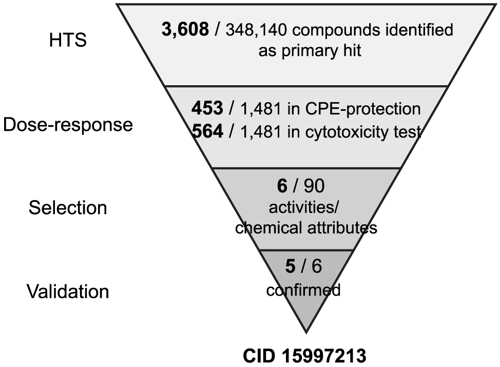 HTS of 348K compounds and identification of the hit compound.