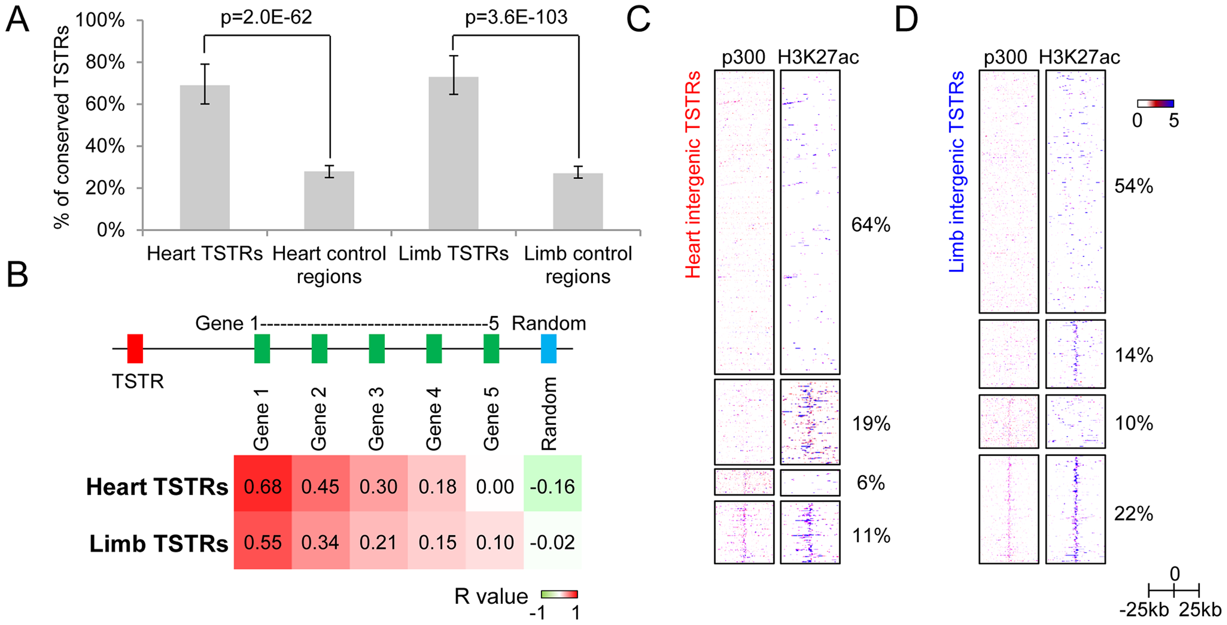 Intergenic regions marked by tissue-specific RNA expression may represent regulatory enhancer elements.