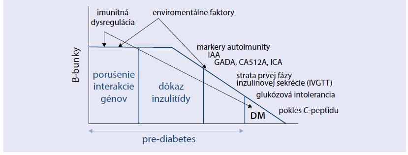 Graf. Model patogenézy a prirodzeného vývoja DM1A.