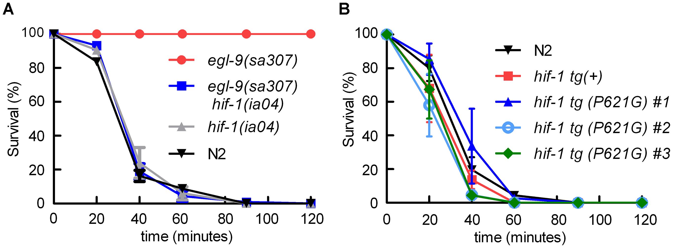 <i>egl-9</i>-mediated resistance to <i>Pseudomonas aeruginosa</i> PAO1 fast killing is mediated by <i>hif-1</i>.