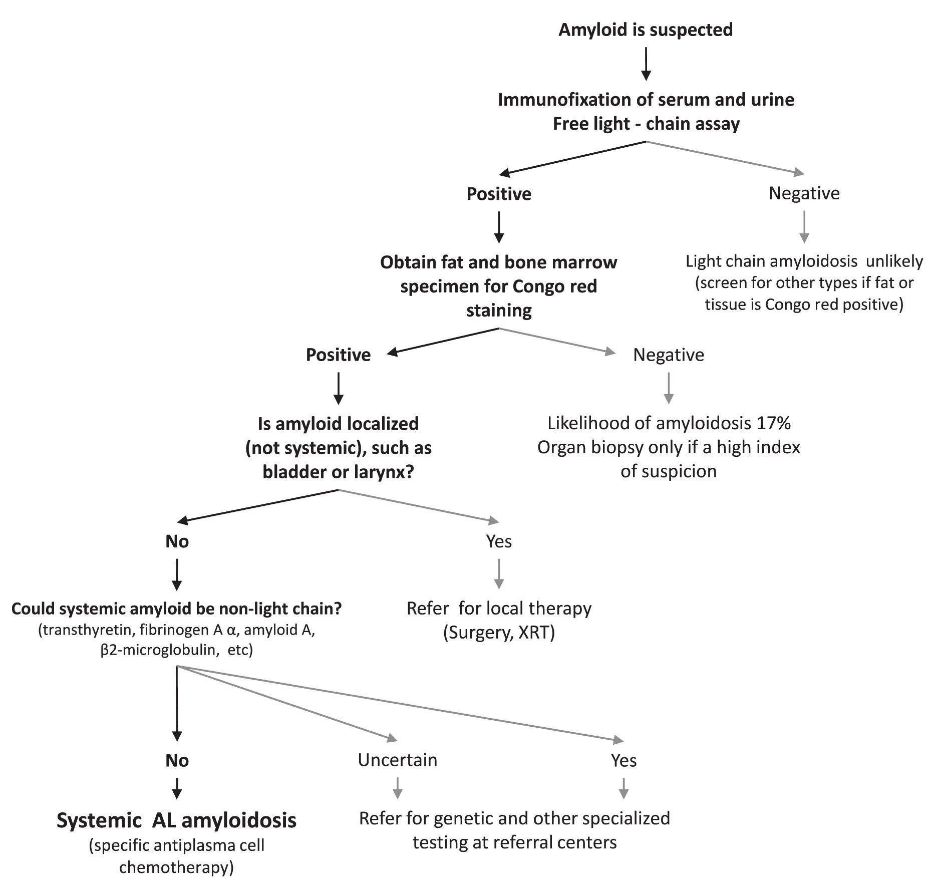 Fig. 1. Algorithm for evaluating patients with suspected amyloidosis [5] XRT – X-ray therapy