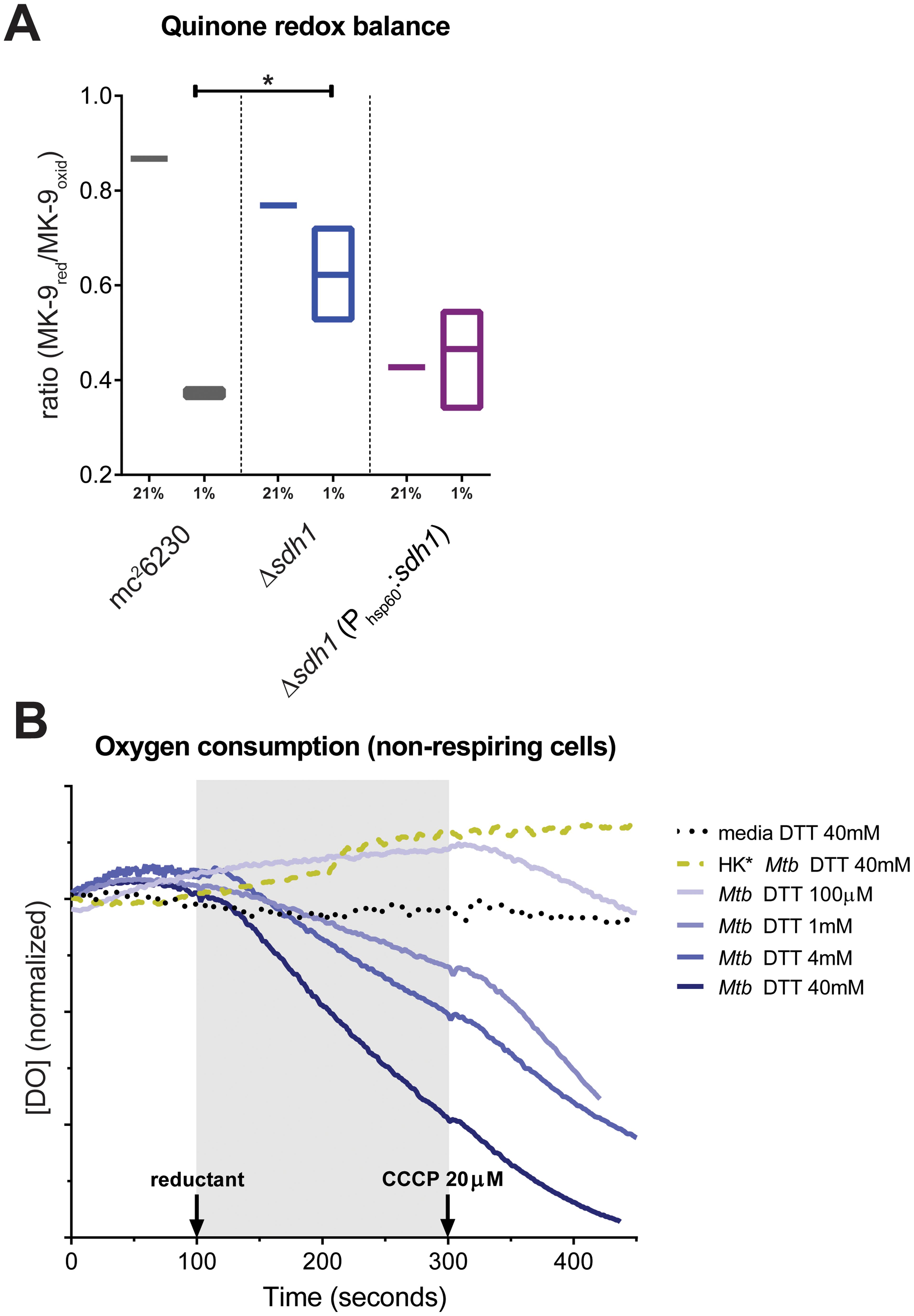Δ<i>sdh1</i> maintains balanced quinone poise at low [O<sub>2</sub>], but can be stimulated to respire.