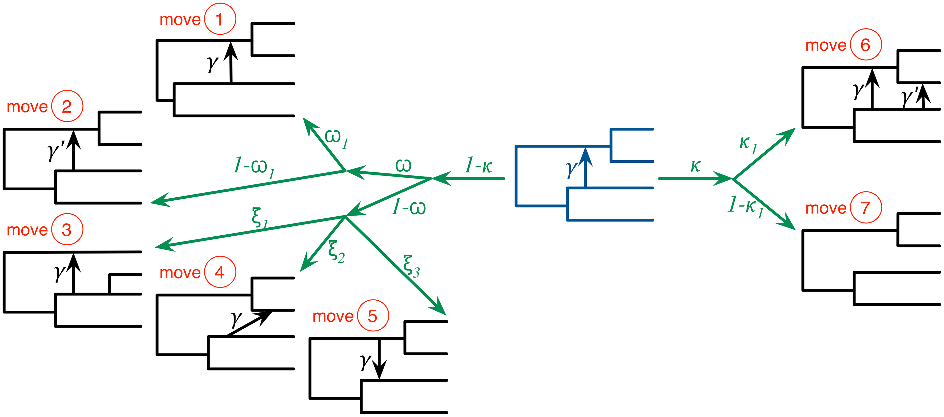 The seven moves that the MCMC sampler utilizes can be classified into ones that do not modify the topology of the phylogenetic network (moves 1 and 2), ones that modify the topology but do not change the model's dimensions (moves 3, 4, and 5), and ones that modify the topology and model's dimensions (moves 6 and 7).