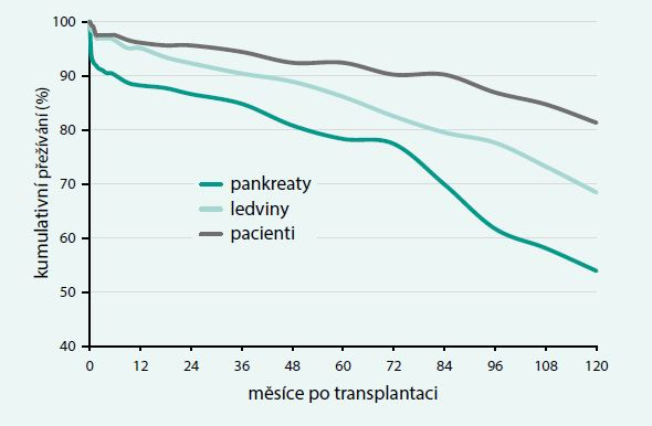 Kumulativní přežívání pacientů, štěpů pankreatu a štěpů ledviny po první kombinované transplantaci pankreatu a ledviny provedené v IKEM v letech 2002–2013 (n = 238). Data nejsou cenzorována při úmrtí příjemce