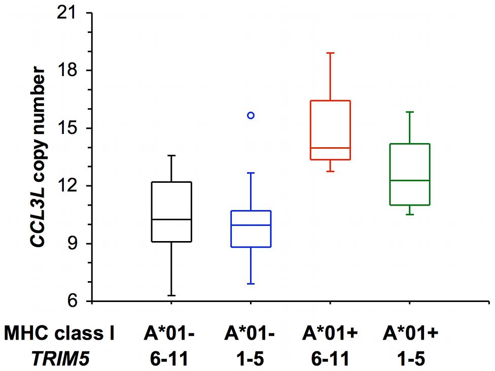 Distribution of <i>CCL3L</i> copy number in a cohort of Indian-rhesus monkeys.