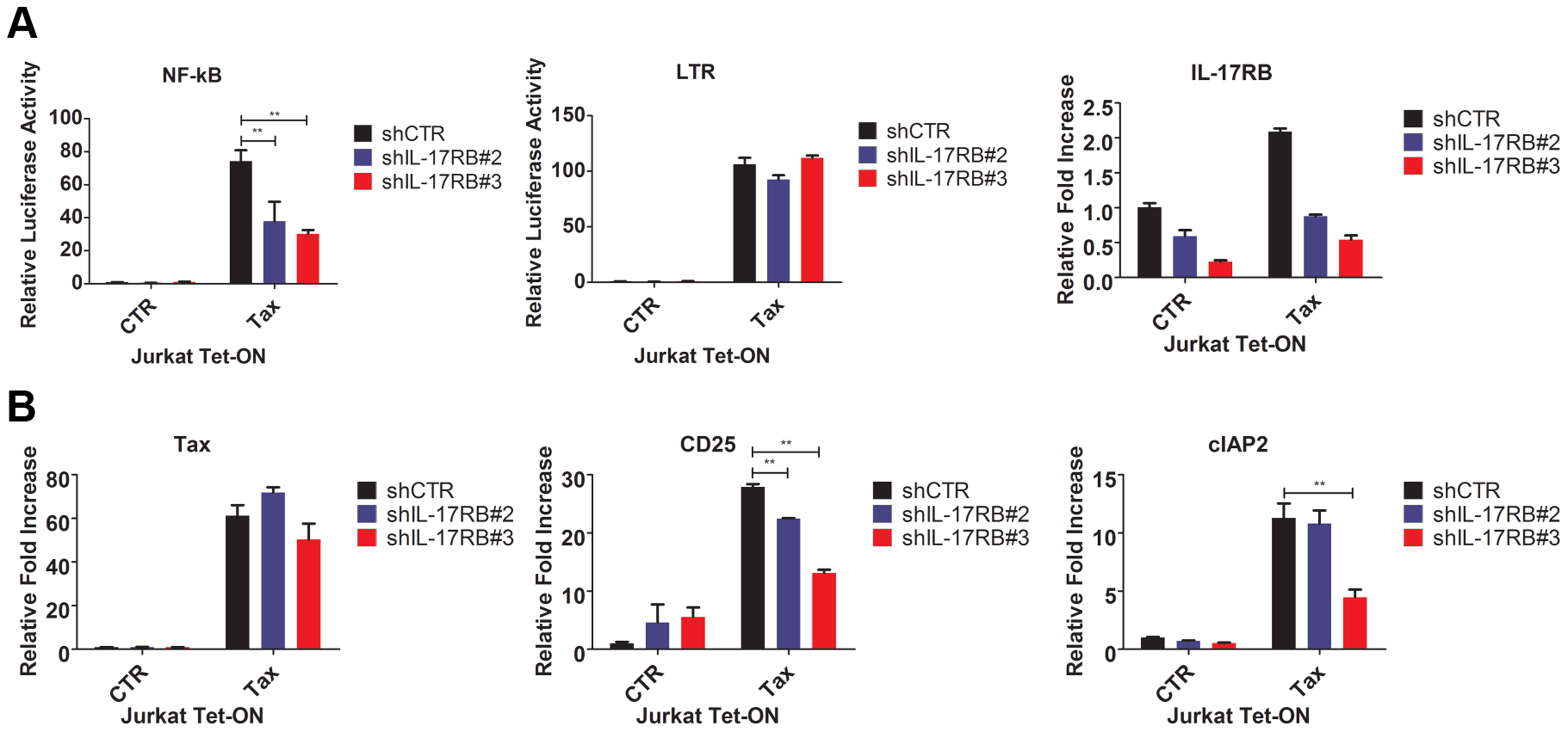 Tax requires IL-17RB for NF-κB activation in T cells.