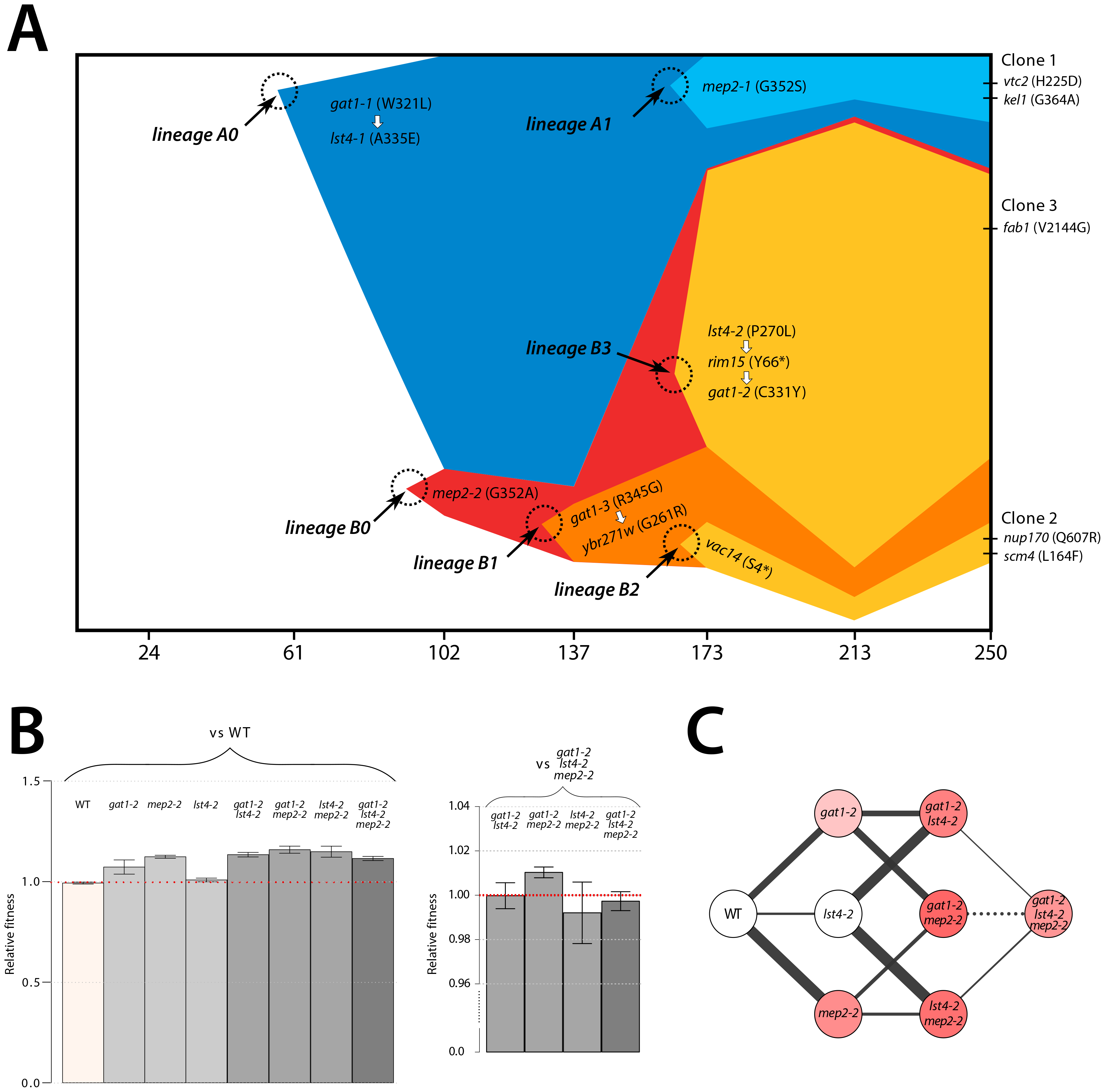 Recurrent selection and evolutionary dynamics of a GNP.