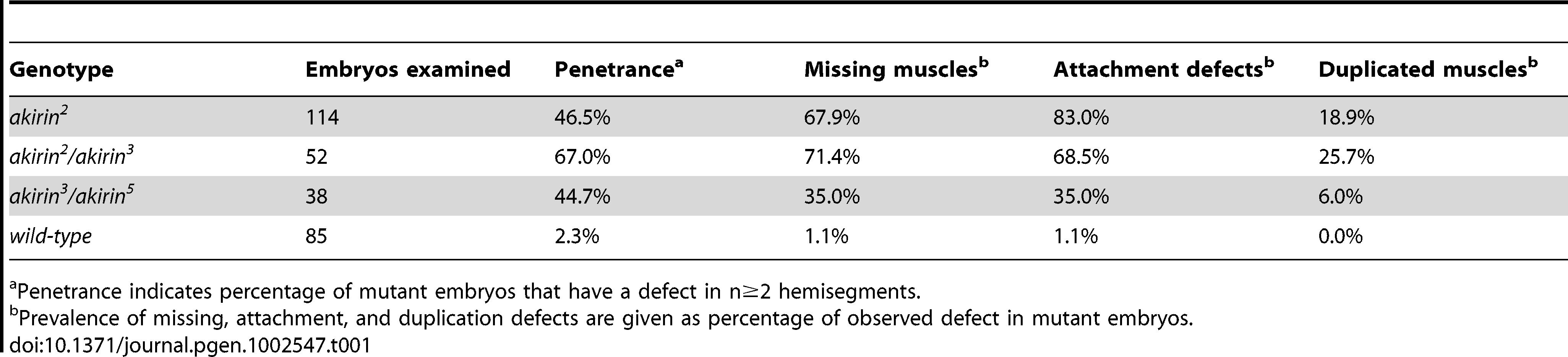 Penetrance of muscle phenotypes in <i>akirin</i> mutant embryos.